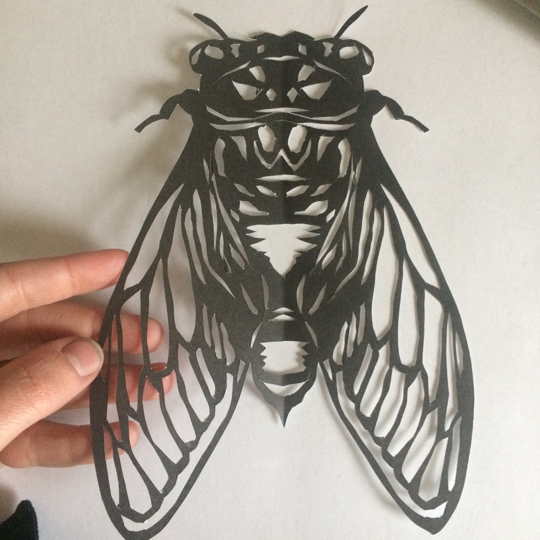 Paper Cutout Bug